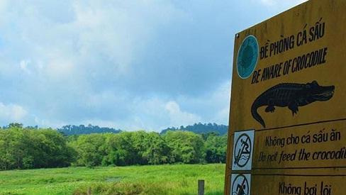 Mạo hiểm khám phá đầm lầy nhiều cá sấu nhất Đông Nam Bộ