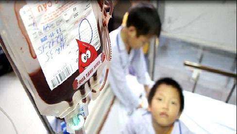 Khẩn cấp: thiếu trầm trọng nhóm máu O, không đủ điều trị trong 2 ngày tới