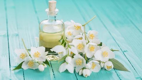 Tinh dầu hoa nhài giúp tinh thần luôn tươi trẻ