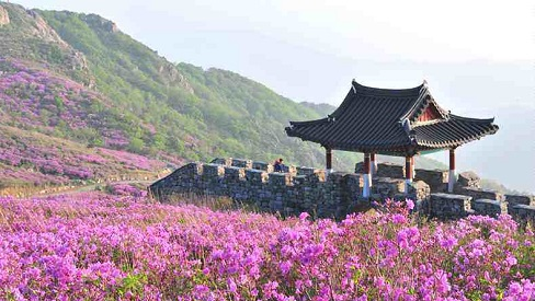 Quê hương HLV Park Hang-seo tuyệt đẹp, là điểm hút khách du lịch Hàn Quốc