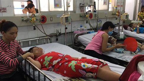 TP.HCM: Hơn 1.000 ca sốt xuất huyết, 1 ca nhiễm Zika