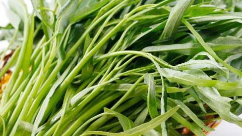 Những người bị gout nên tránh xa rau muống