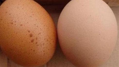 Đừng mua loại trứng này - nó có thể khiến bạn nhiễm độc và hôn mê