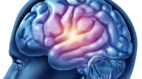 Mùa thi – Chớ lạm dụng thuốc bổ não