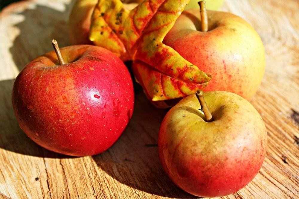 'Điểm mặt' những loại trái cây giúp mát gan, giải nhiệt vào mùa hè-3