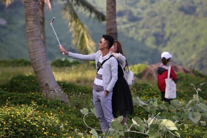 """Du khách mê mẩn Hoa vàng trên cỏ xanh"""" trên đỉnh Sơn Trà - Đà Nẵng-1"""