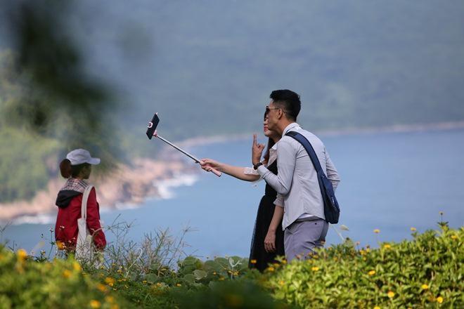 """Du khách mê mẩn Hoa vàng trên cỏ xanh"""" trên đỉnh Sơn Trà - Đà Nẵng-10"""