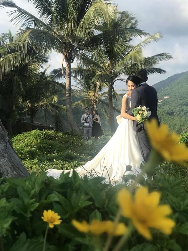"""Du khách mê mẩn Hoa vàng trên cỏ xanh"""" trên đỉnh Sơn Trà - Đà Nẵng-6"""