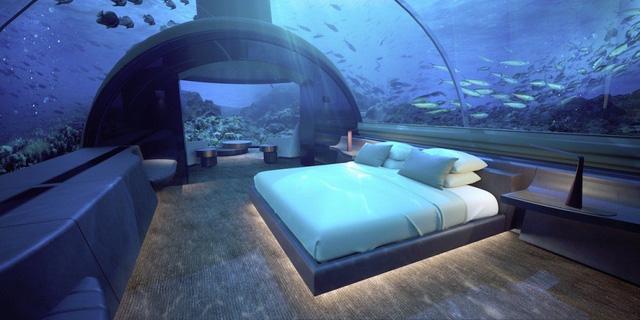 Ngỡ ngàng khách sạn dưới biển nơi du khách có thể ngủ cùng cá mập-1