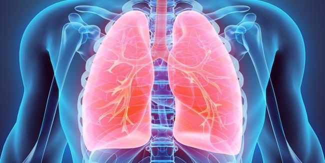 Giảm nguy cơ mắc bệnh ung thư phổi với những biện pháp đơn giản ai cũng làm được-1