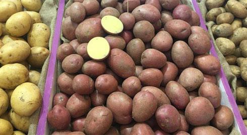 Cách chế biến khoai tây chuẩn như nhà hàng 5 sao