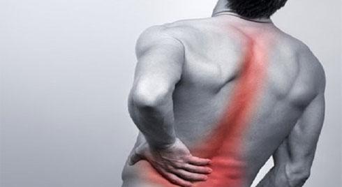 Đa u tủy xương là bệnh gì? Những điều cần biết về bệnh đa u tủy