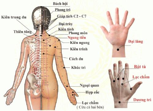 Cách  bấm huyệt chữa đau mỏi vai gáy dễ thực hiện tại nhà-3