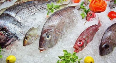 Hãy cân nhắc kỹ khi chọn thực phẩm đông lạnh!