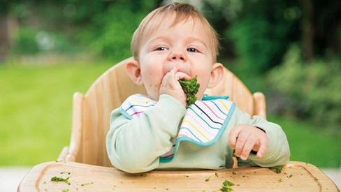 Để tránh bị ung thư, hãy tập cho bé thói quen ăn thật nhiều rau xanh ngay từ bây giờ