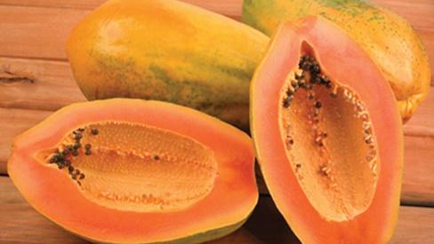 Đu đủ - loại quả phòng chống được rất nhiều bệnh thường gặp mà không phải ai cũng biết