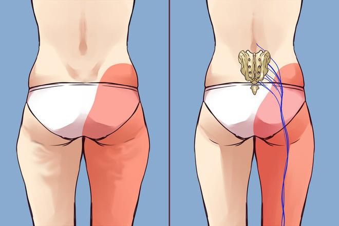 Bài tập loại bỏ chứng tắc nghẽn bạch huyết, giảm đau xương khớp dành cho người ngồi nhiều-6