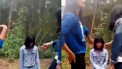 Một trong năm nữ sinh bạo lực bạn ở Nghệ An có tiếng ngoan ngoãn, chuẩn bị thi học sinh giỏi tỉnh