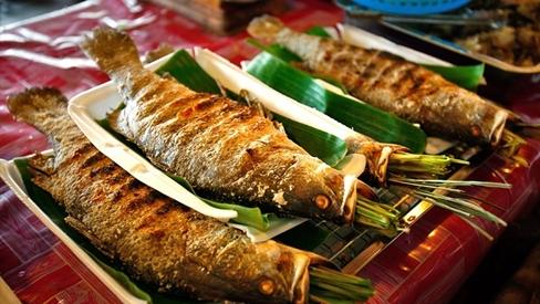 5 loại cá ăn vào dễ bị ngộ độc, nặng có thể dẫn đến ung thư và tử vong