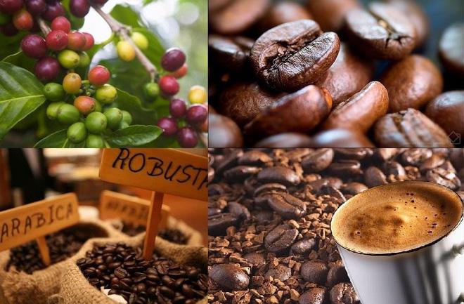 Uống cà phê rất nhiều lợi ích, nhưng thời điểm này thì không nên uống-2