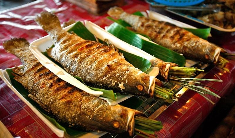5 loại cá ăn vào dễ bị ngộ độc, nặng có thể dẫn đến ung thư và tử vong-1