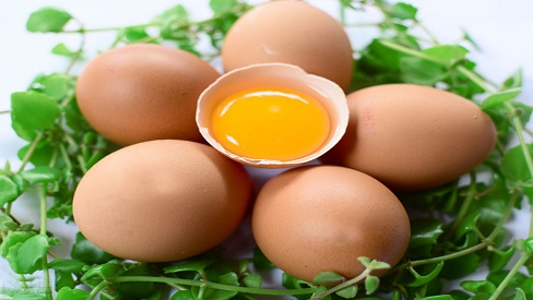 Bài thuốc hay từ trứng gà phòng chống tăng huyết áp