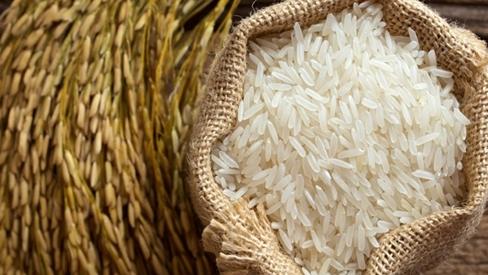 Cách nhận biết gạo thật - giả để không bị lừa đảo