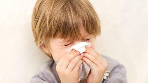 Dược thiện trị viêm mũi xoang mạn tính ở trẻ
