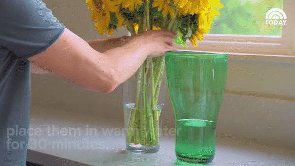 6 mẹo thần thánh giúp hồi sinh hoa héo trong 3s, người bán hoa không bao giờ nói cho bạn-6