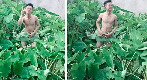 """Giữa """"bão"""" chụp ảnh hoa sen, lại xuất hiện chàng trai khoe thân ở bãi khoai nước khiến dân mạng """"cạn lời"""""""