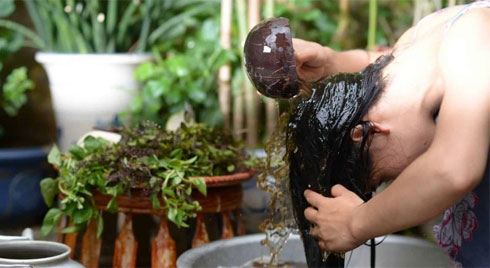 Bồ kết: Bí quyết giúp bạn chăm sóc tóc mềm mượt tự nhiên