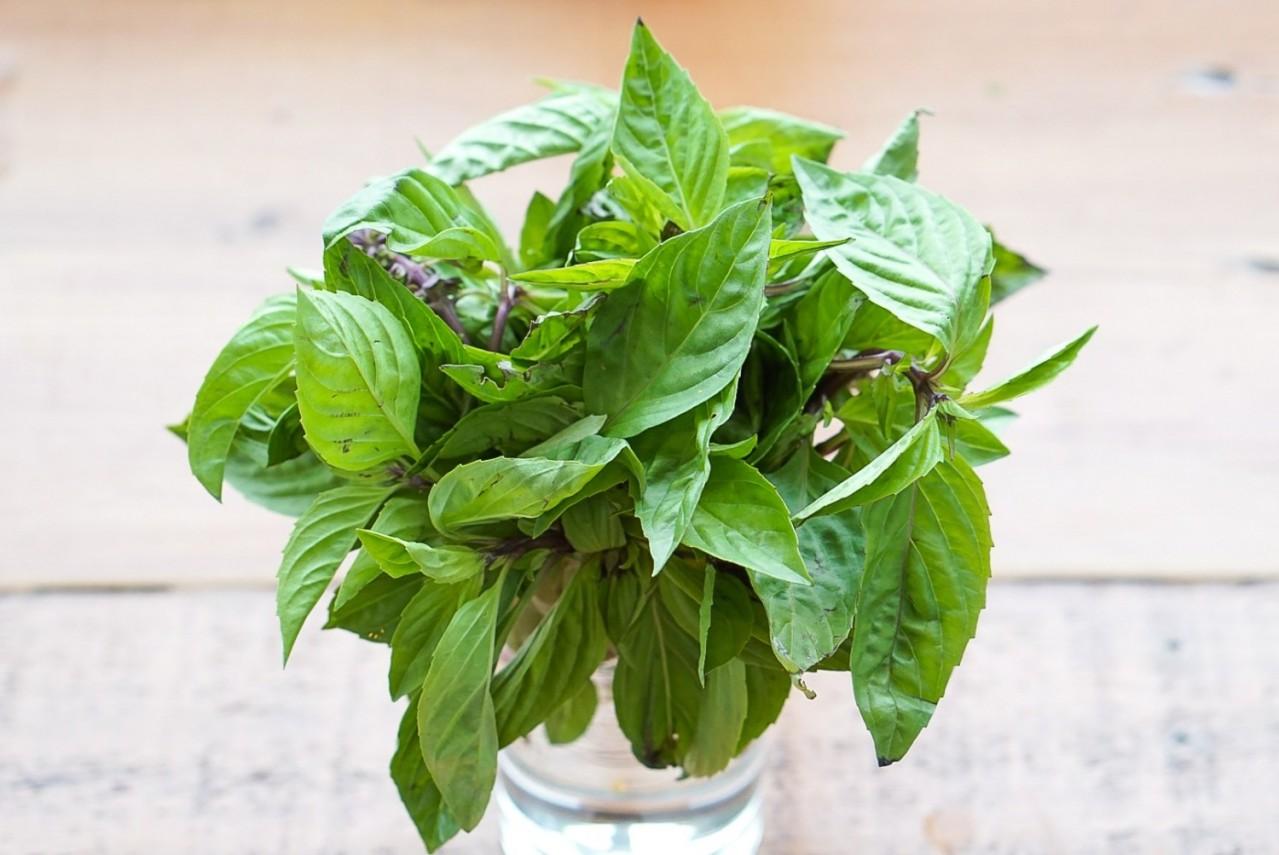 Thực phẩm tự nhiên giúp ngăn ngừa suy giảm trí nhớ-4
