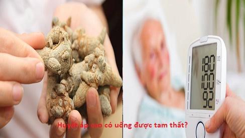 Huyết áp cao có uống được tam thất hay không?