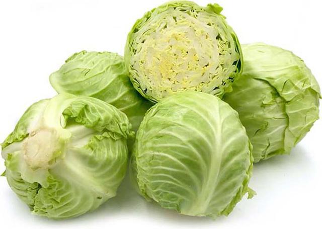 Bắp cải - Cây rau, cây thuốc-1