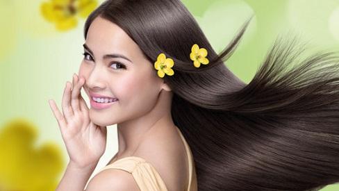 Học ngay 3 công thức trị tóc khô xơ dứt điểm bằng mật ong