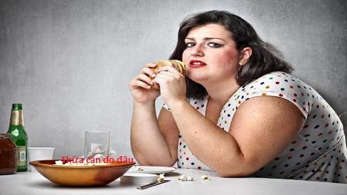 Thừa cân -  Nguyên nhân, hậu quả và cách giảm cân khoa học-1