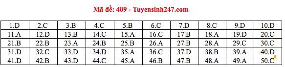 Đáp án thi môn Tiếng Anh THPT quốc gia 2019 (tất cả mã đề)-7