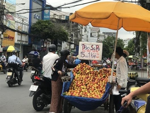 Đào Trung Quốc 'gắn mác' Sapa bán la liệt-1
