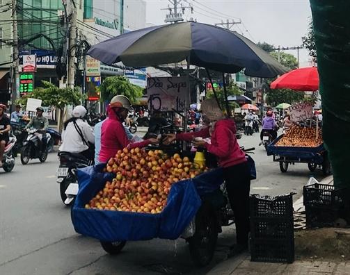 Đào Trung Quốc 'gắn mác' Sapa bán la liệt-5