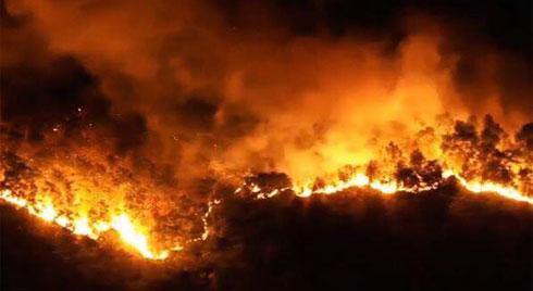 Nghi phạm đốt rác gây cháy rừng kinh hoàng ở Hà Tĩnh đối diện mức án nào?