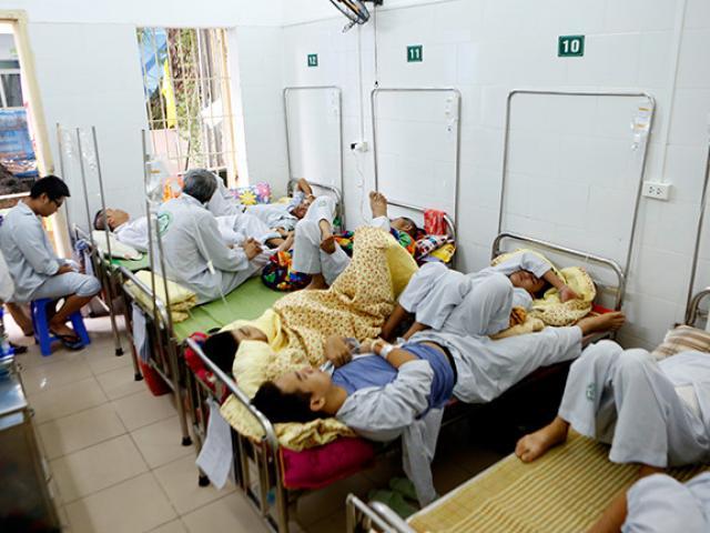 Tìm hiểu bệnh sốt xuất huyết với hội chứng thận do Hantavirus-2