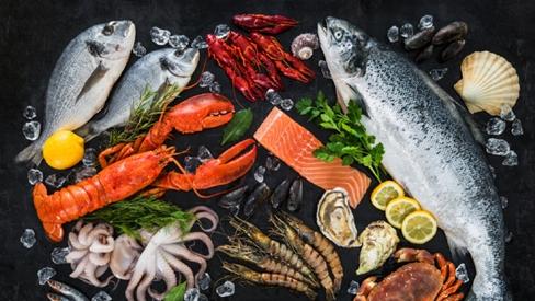 Cách nấu món ngon từ cá và mọi điều bạn cần biết về cá biển