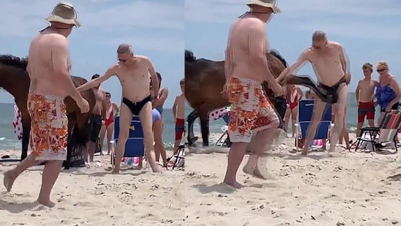 Du khách đau đớn khi bị ngựa hoang đá trúng 'chỗ hiểm'