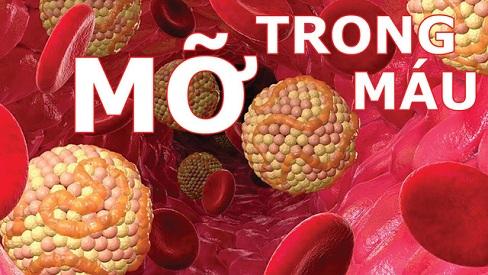 Dấu hiệu và cách phòng tránh bệnh máu nhiễm mỡ