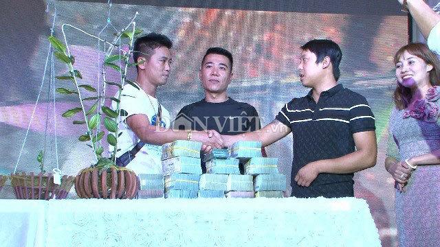Hàng khủng Lâm Đồng: Chậu lan Giả hạc đột biến bán giá 5 tỷ-1