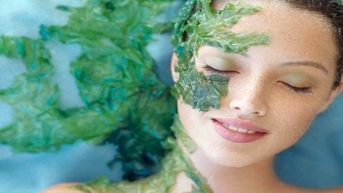 Công thức làm mặt nạ tảo xoắn dưỡng da đơn giản ngay tại nhà