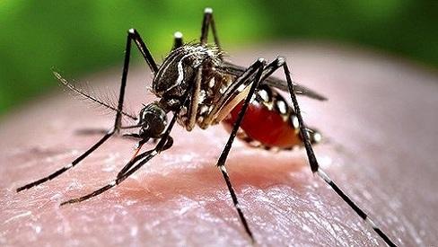 Các bệnh có thể mắc sau mưa bão và cách phòng tránh