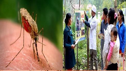 Bệnh sốt rét: Nguyên nhân và cách phòng bệnh