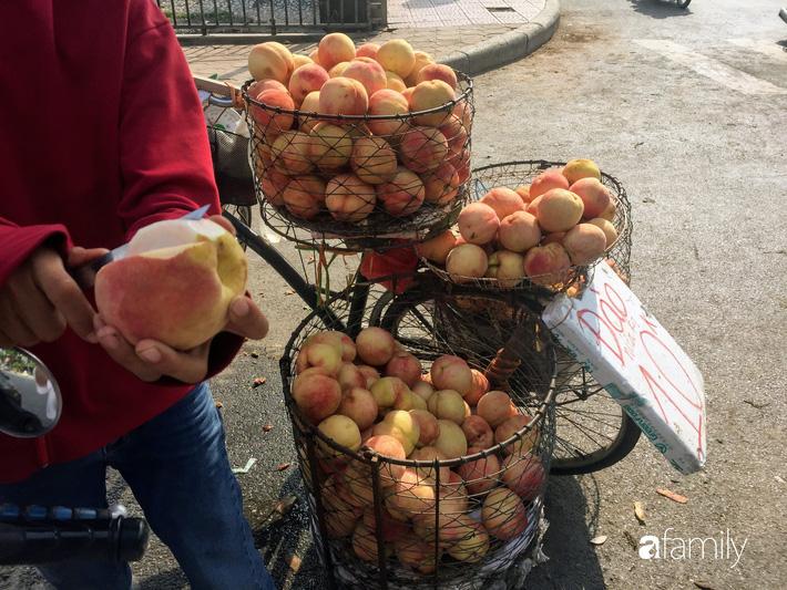 Đào Sapa to mọng giá 20.000 đồng/1 kg bán đầy đường nhưng nguồn gốc xuất xứ còn bỏ ngỏ-4