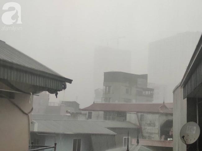 Bão số 4 đang di chuyển vào đất liền, Hà Nội mưa gió khủng khiếp, đã có 1 người chết do cây xanh đè trúng-12